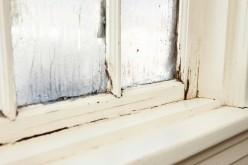 Как правильно выбрать окна — нюансы о которых вы могли не знать